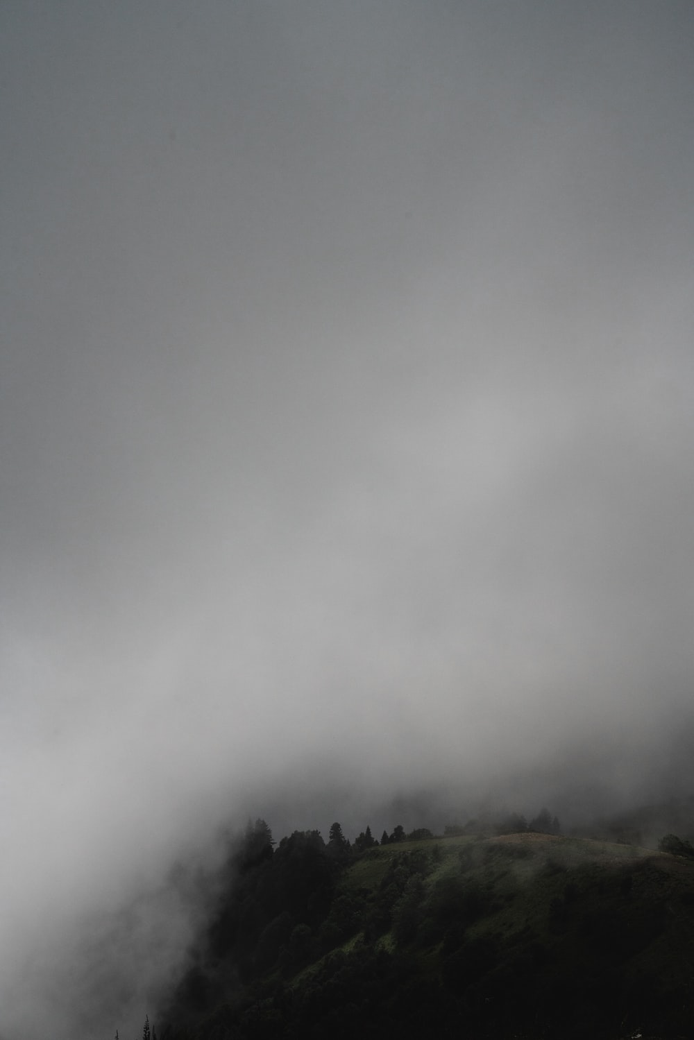 green trees on mountain under white clouds