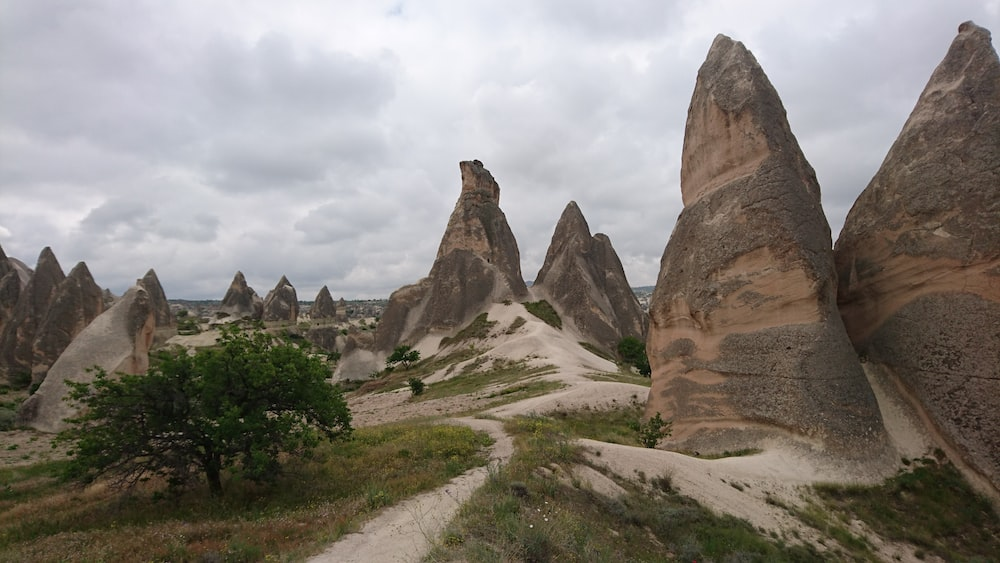 brown rock formation near green trees during daytime