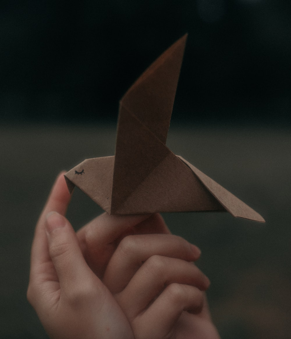 person holding brown paper plane