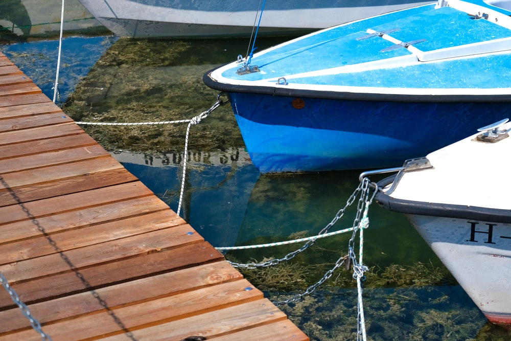 blue and white boat on dock during daytime