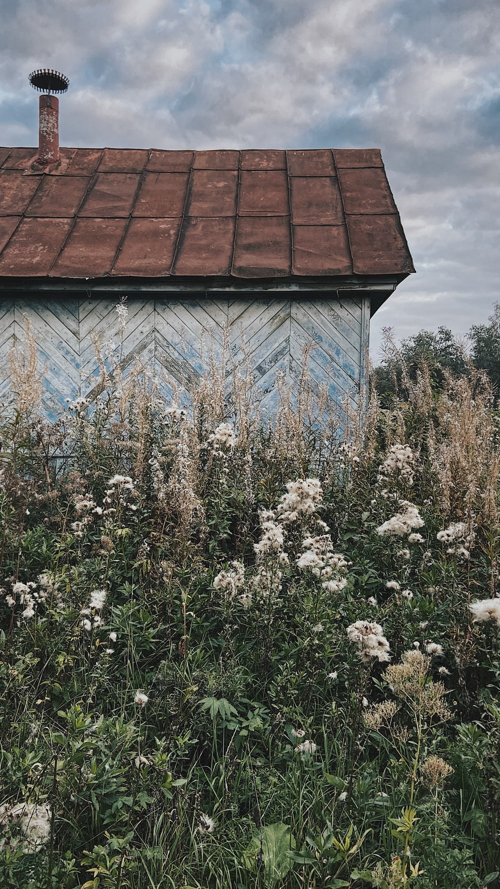 brown roof with white flowers on roof
