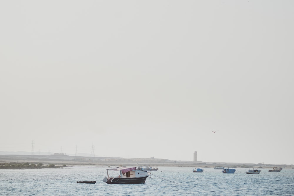 red and white boat on sea during daytime