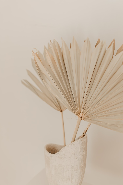 white umbrella on brown wooden table