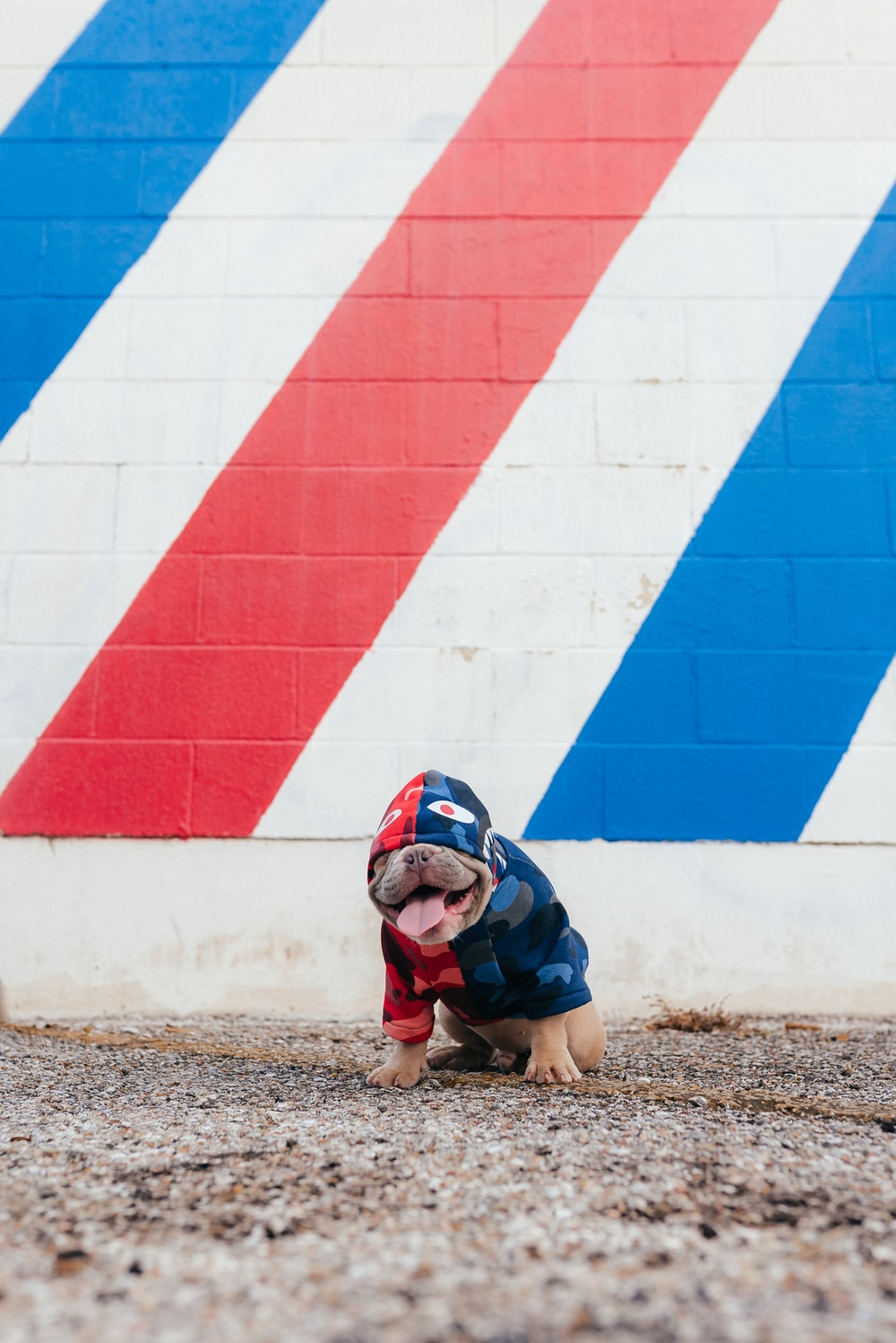 girl in blue jacket and black pants sitting on ground beside blue and red concrete wall