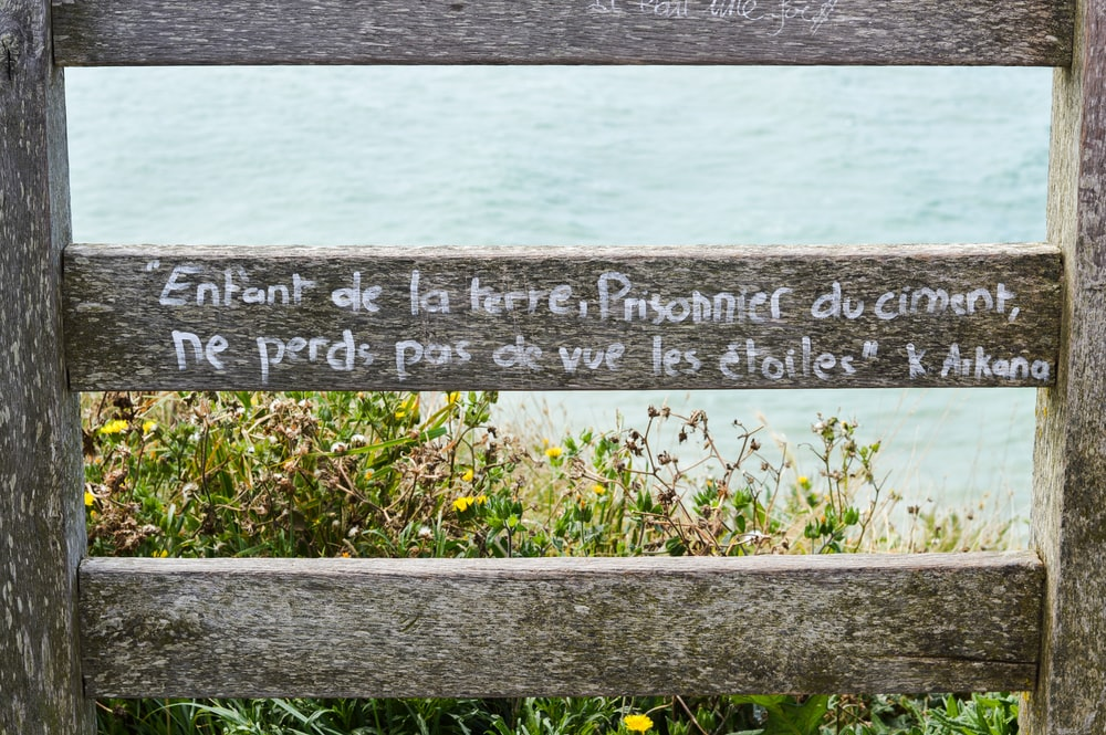 gray wooden quote board on green grass near body of water during daytime
