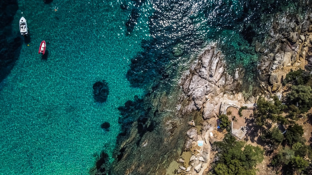 aerial view of green trees on brown rocky mountain beside blue sea during daytime
