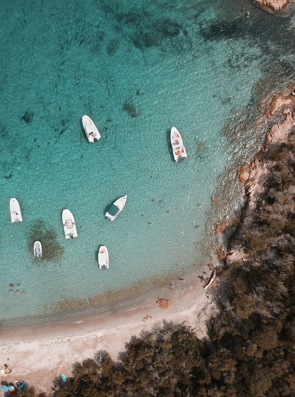 aerial view of boats on sea during daytime