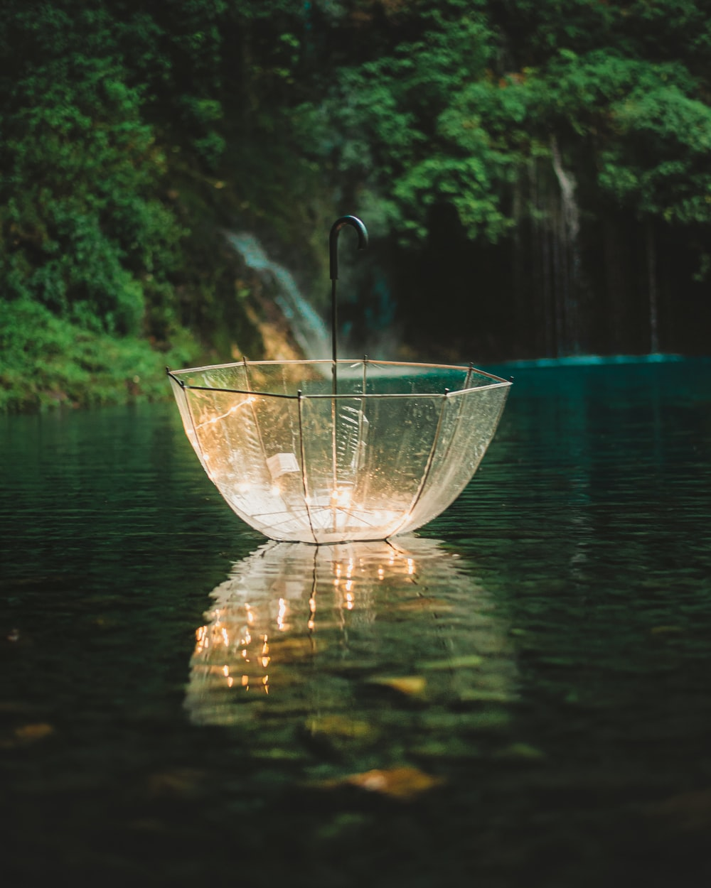 clear glass bowl on water