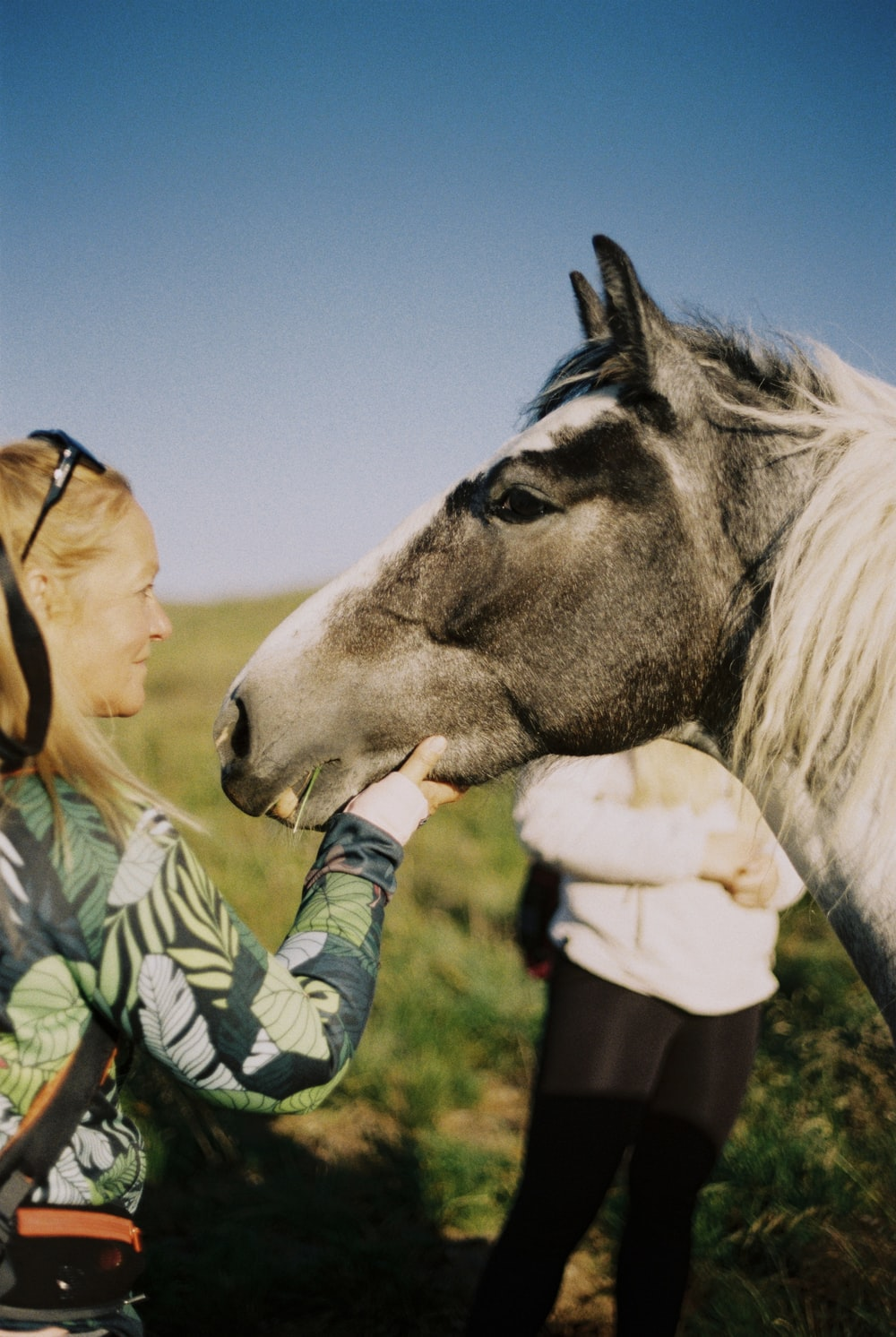 woman in green and white long sleeve shirt standing beside white horse during daytime