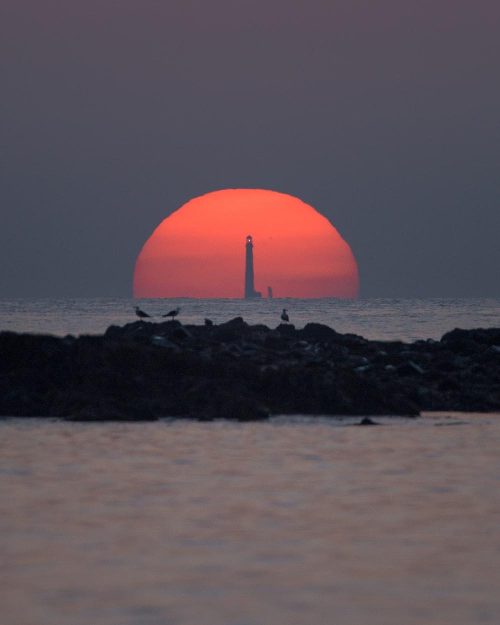 orange ball on black rock near body of water during sunset