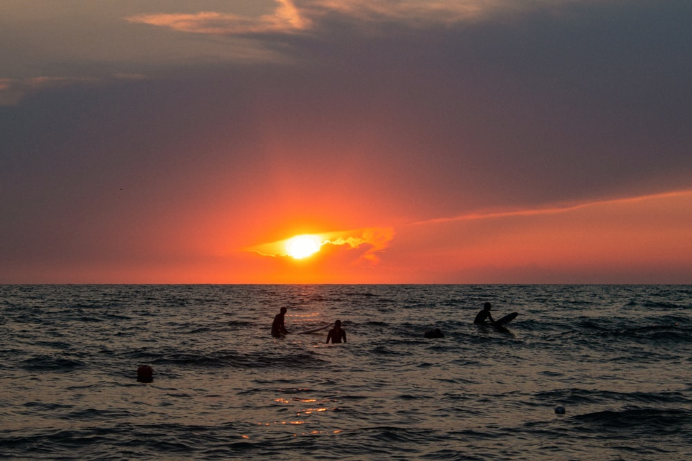 people in beach during sunset