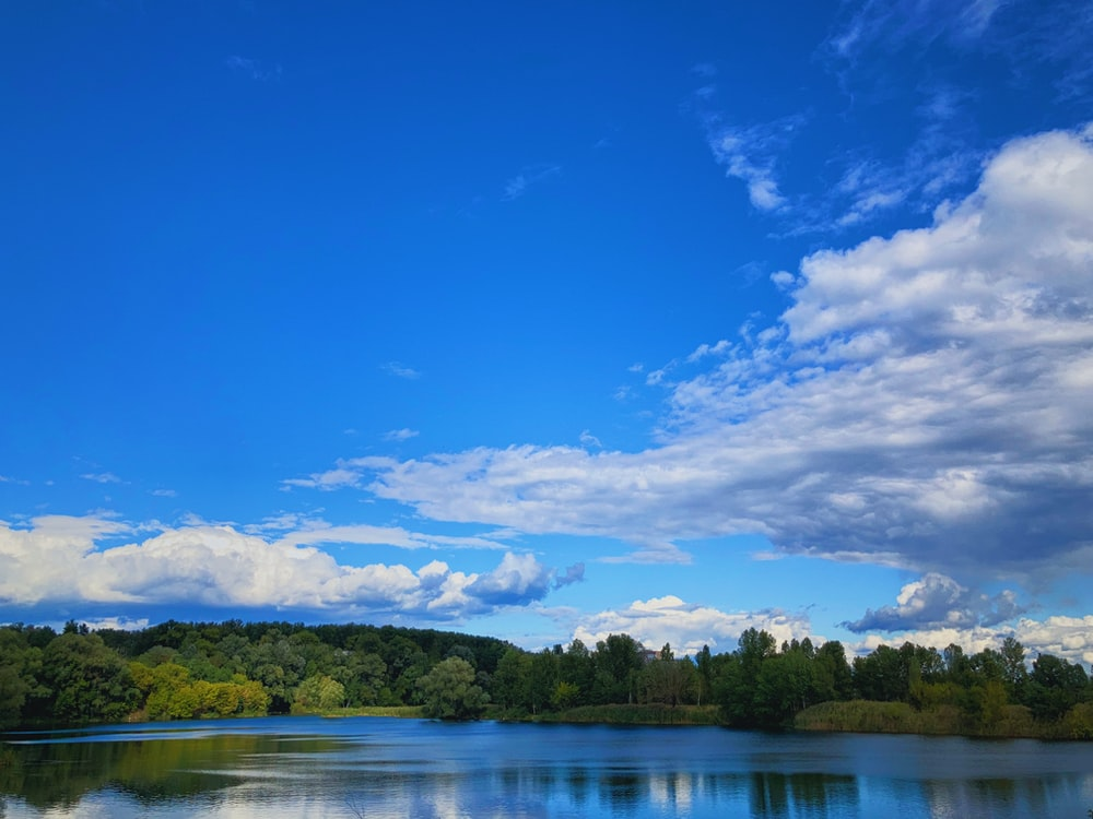 green trees beside lake under blue sky and white clouds during daytime