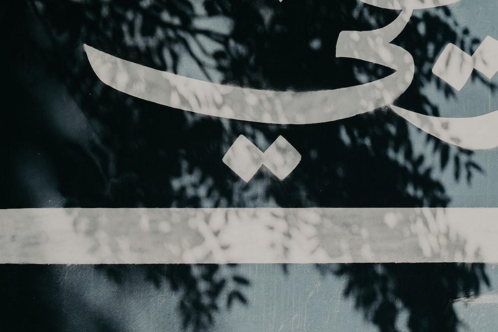 black and white star print textile