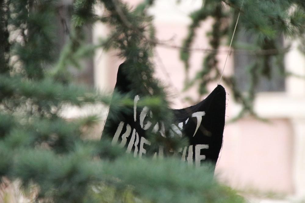 black and white bird figurine on green grass during daytime