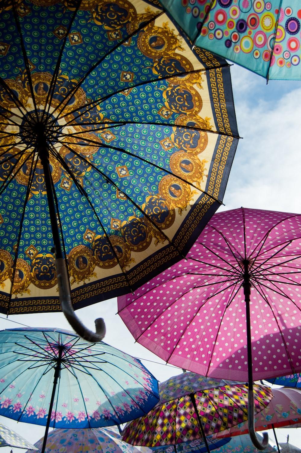 pink and blue floral umbrella