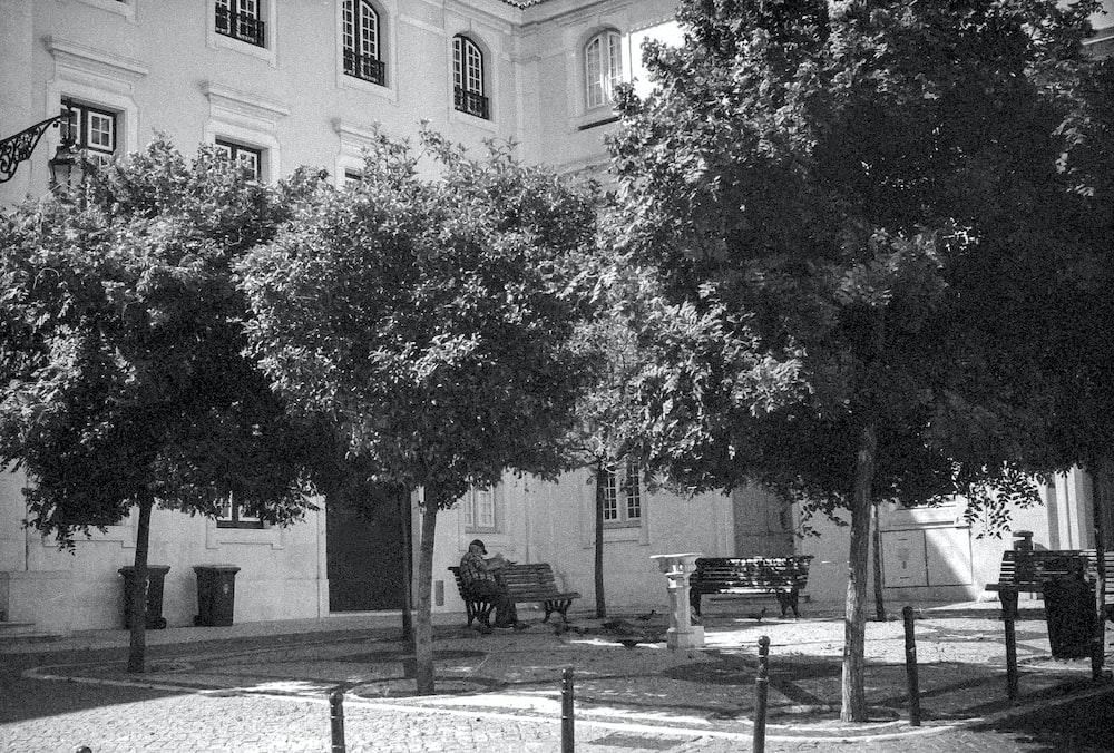 grayscale photo of man sitting on bench near tree