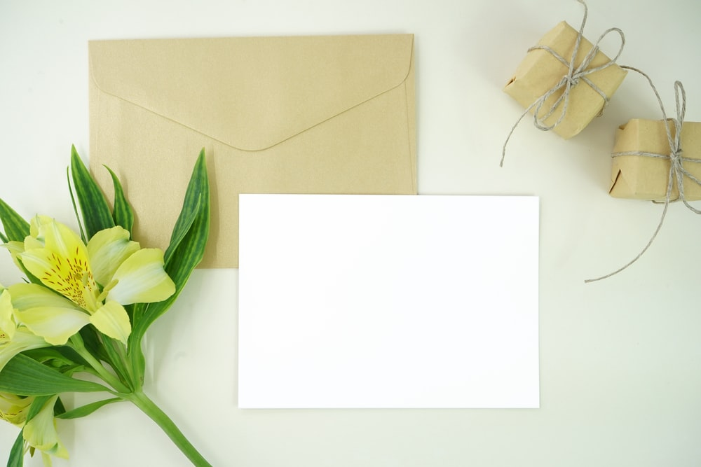 white paper beside green flower
