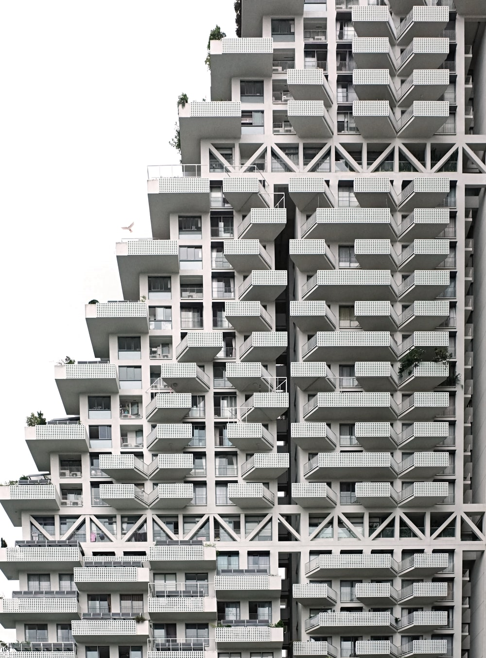 white and green concrete building
