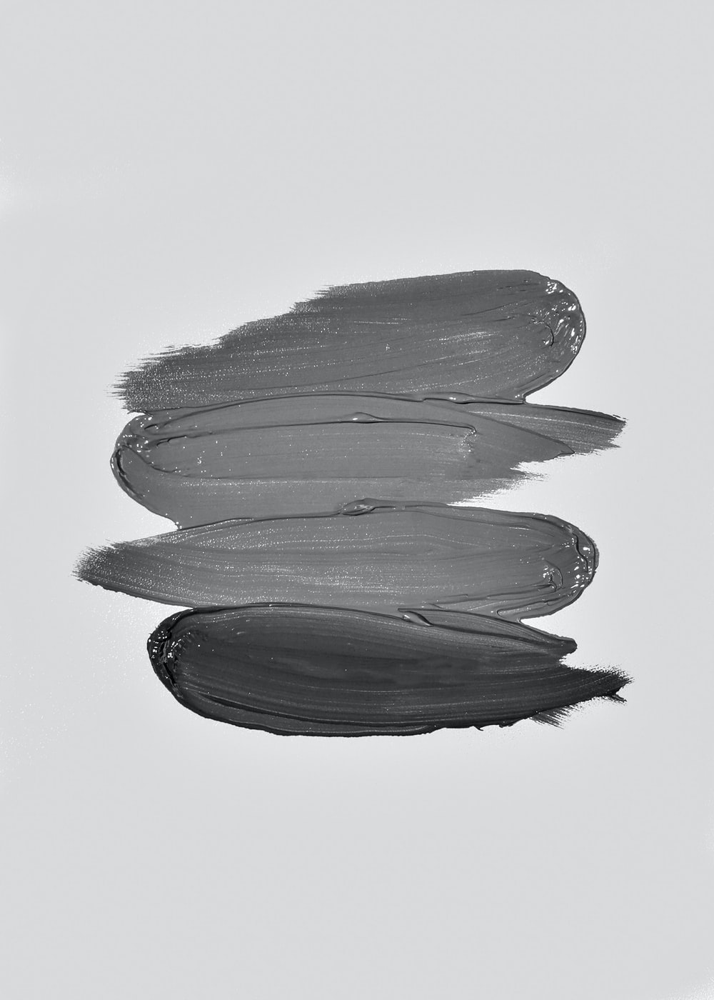 black and white flower petals