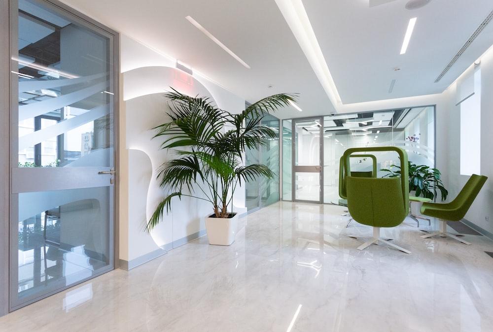 green potted plant on white ceramic floor tiles