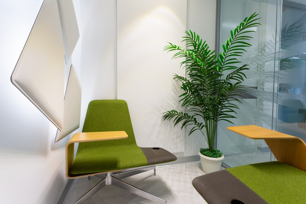 green and black chair beside green plant