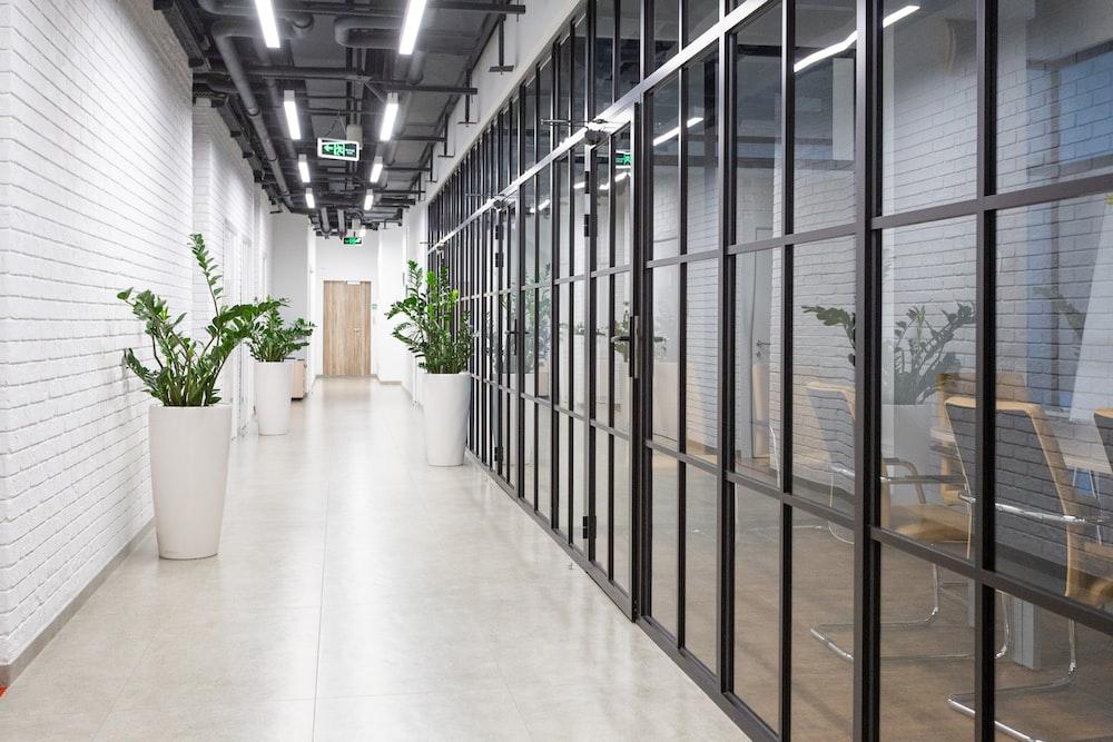 white hallway with glass windows
