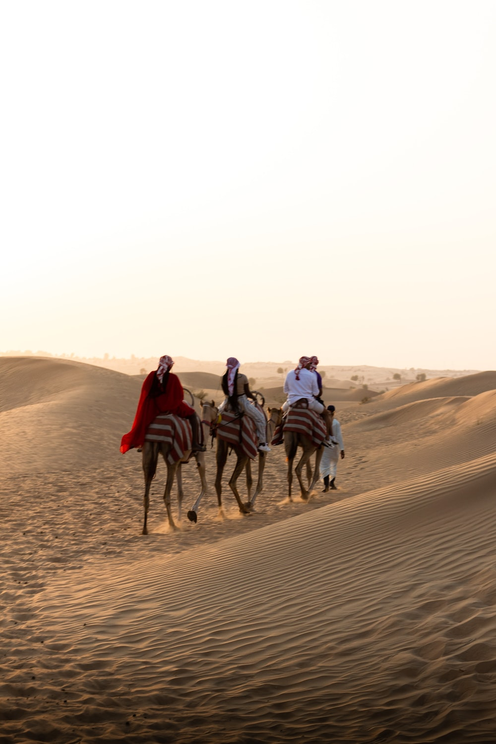 people riding horses on brown sand during daytime