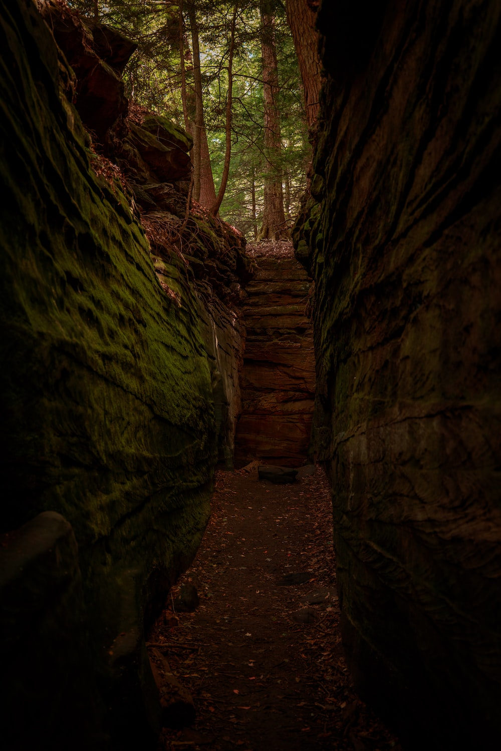 brown wooden stairs between brown rock formation during daytime