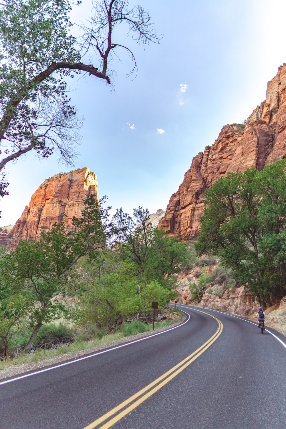 gray concrete road between green trees and brown rock formation during daytime