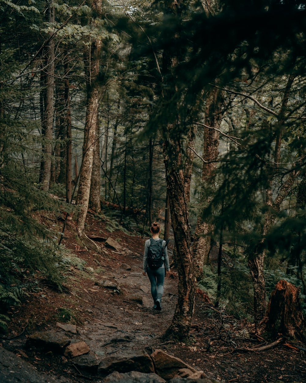 woman in gray jacket walking on forest during daytime