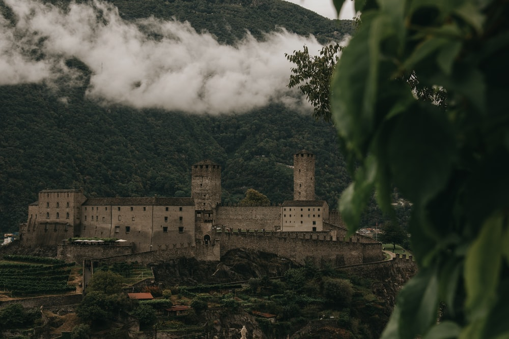 gray concrete castle near green trees during daytime