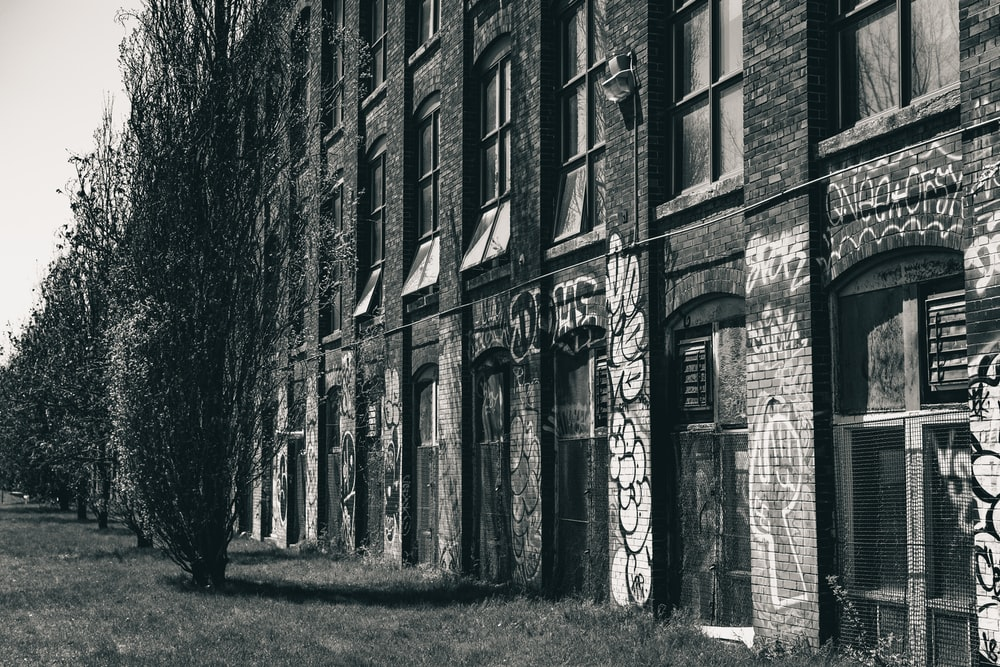 grayscale photo of bare trees in front of brick building