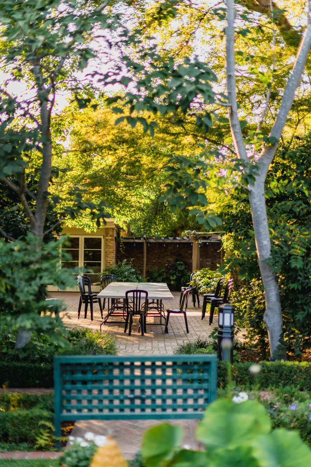 brown wooden table and chairs near green tree during daytime
