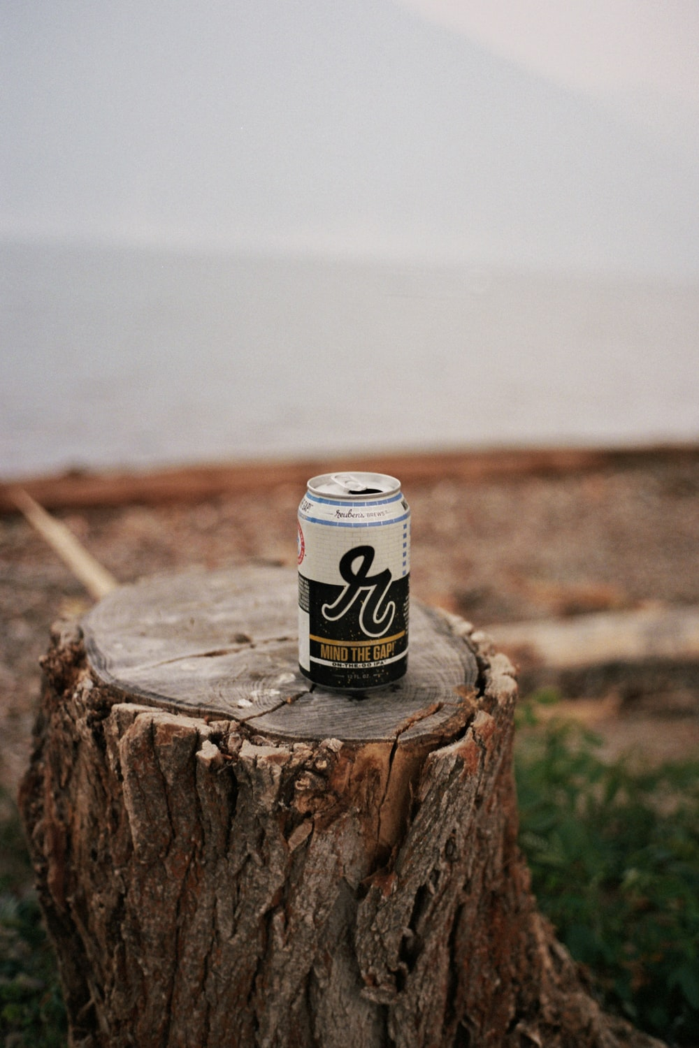 white and black can on brown wood