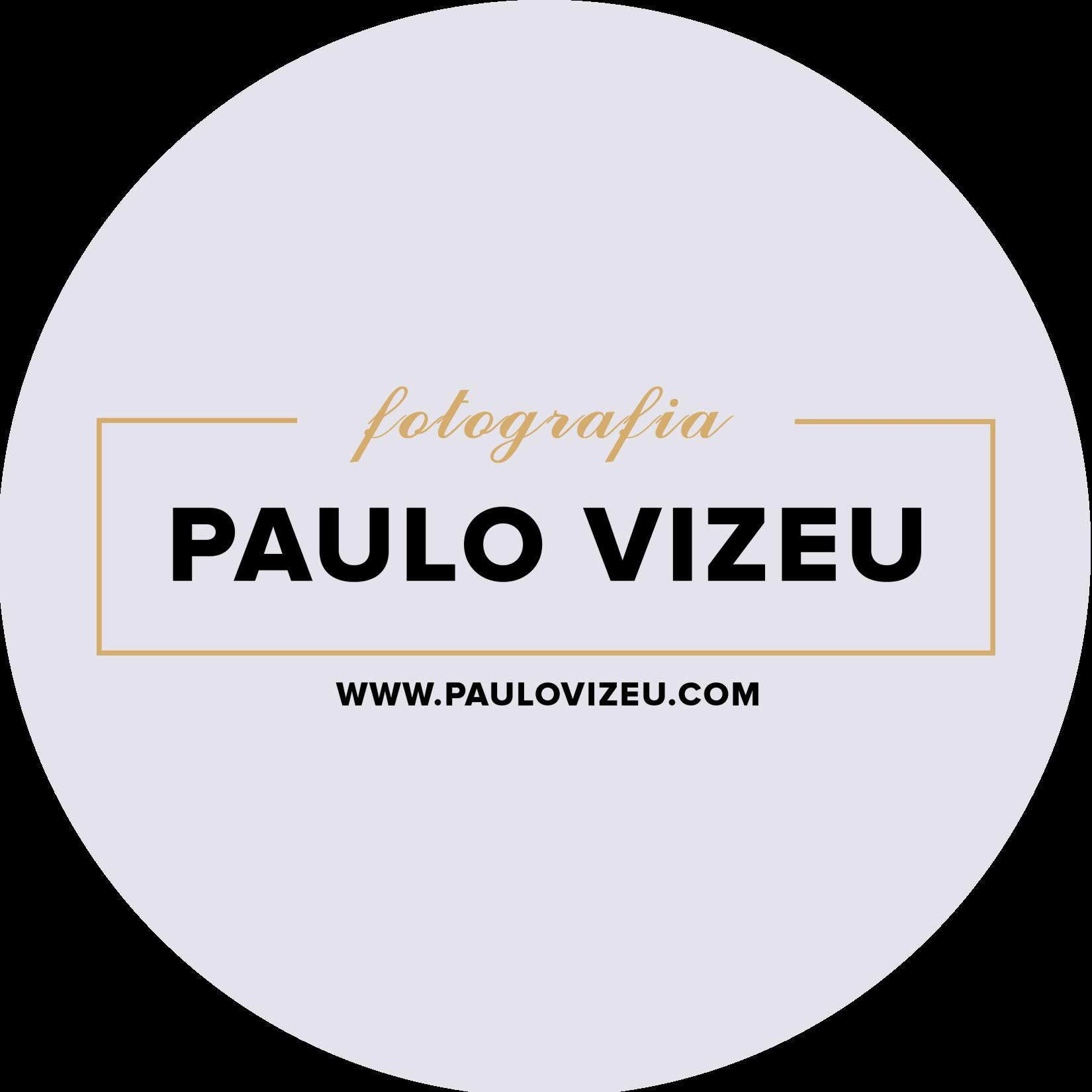 Go to Paulo Vizeu's profile
