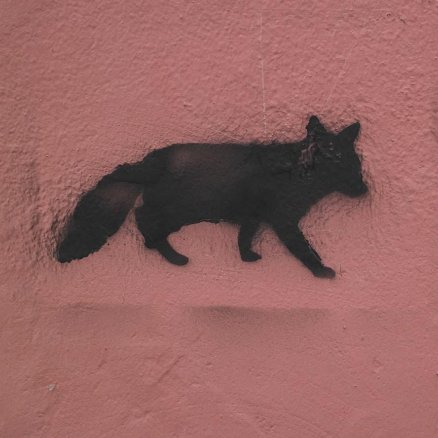 Avatar of user A Fox