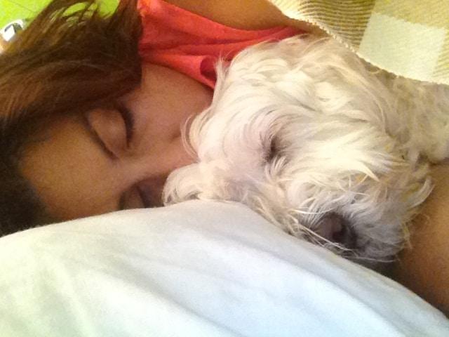 Go to Camila Serey's profile