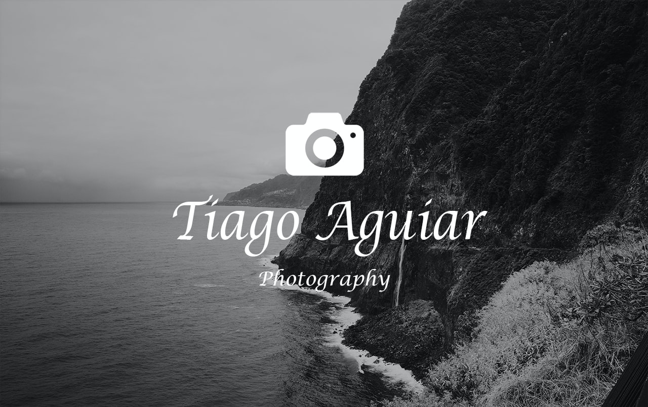 Go to Tiago Aguiar's profile