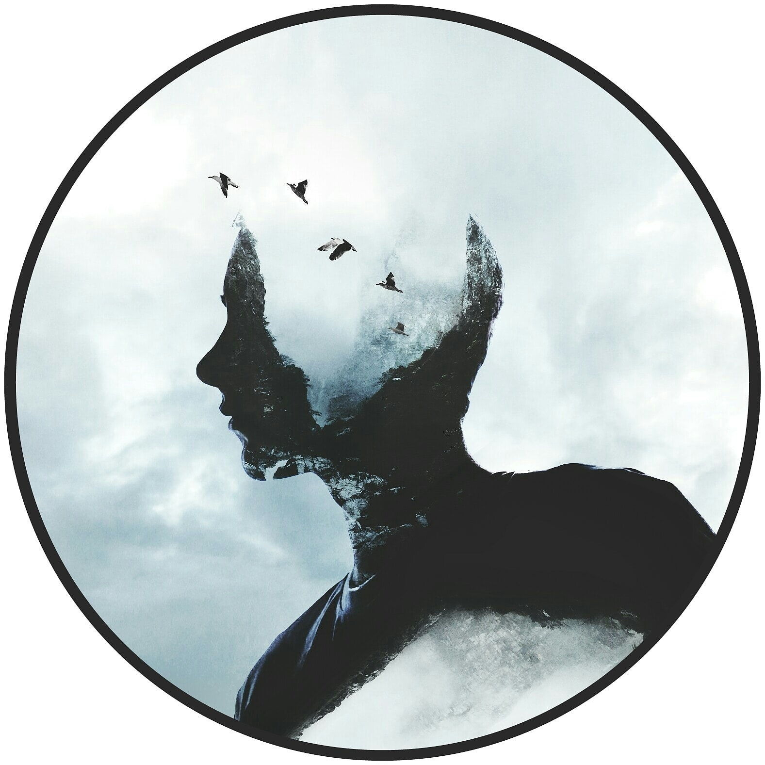 Avatar of user Kai Dörner