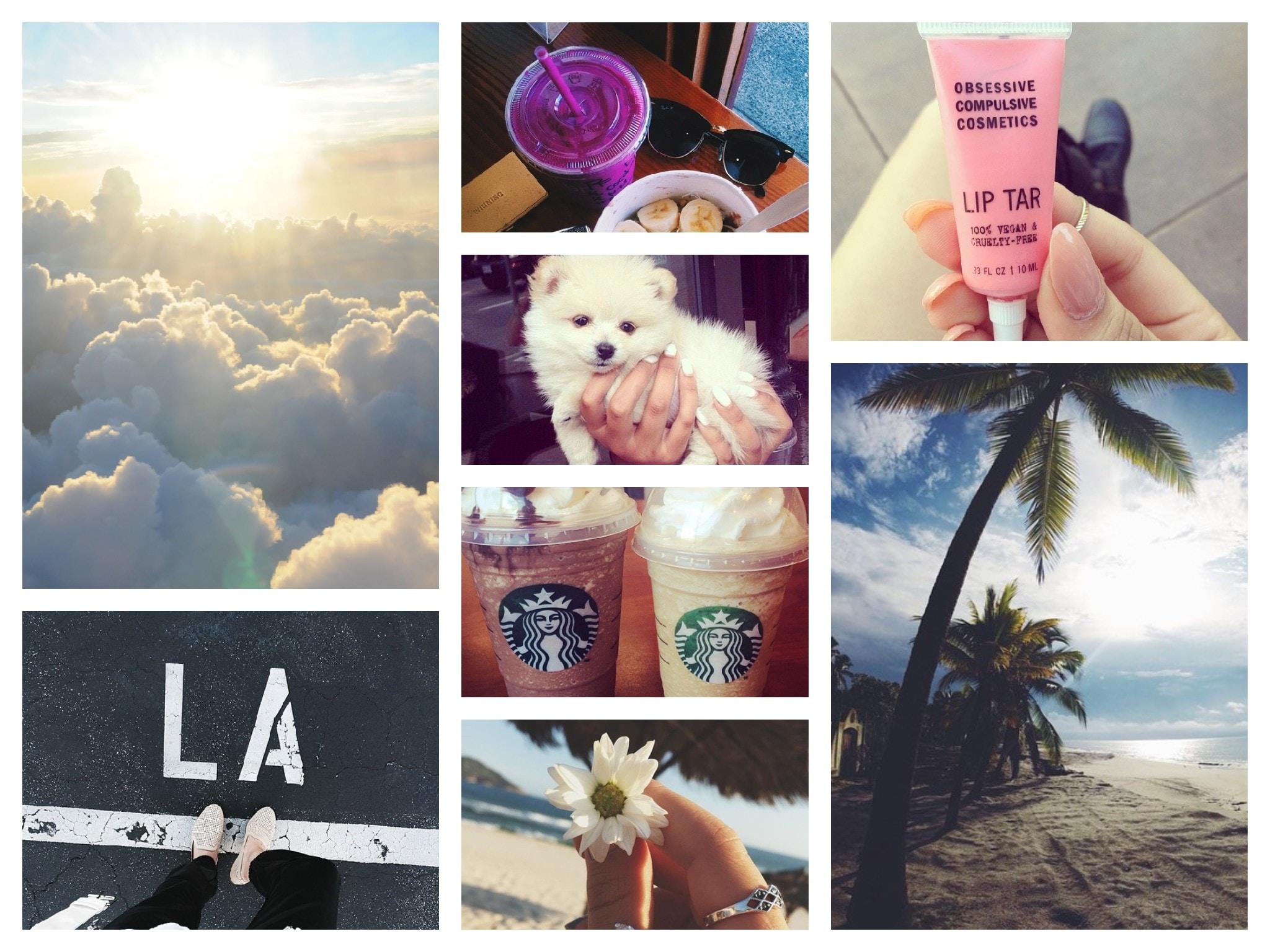 Go to Olivia Stonehouse's profile