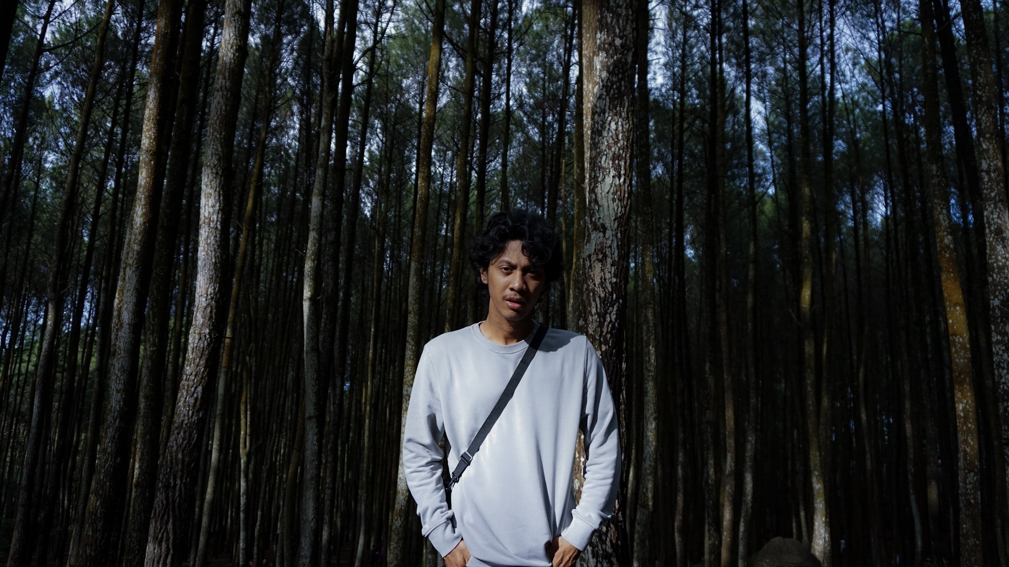 Avatar of user Gede Wirahadi Pradnyana