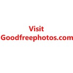 Avatar of user Good Free Photos