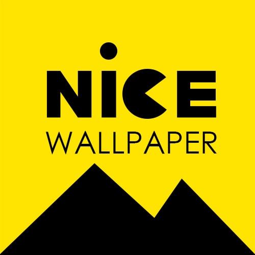 Avatar of user NICE WALLPAPER