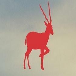 Avatar of user Antelope  Collision