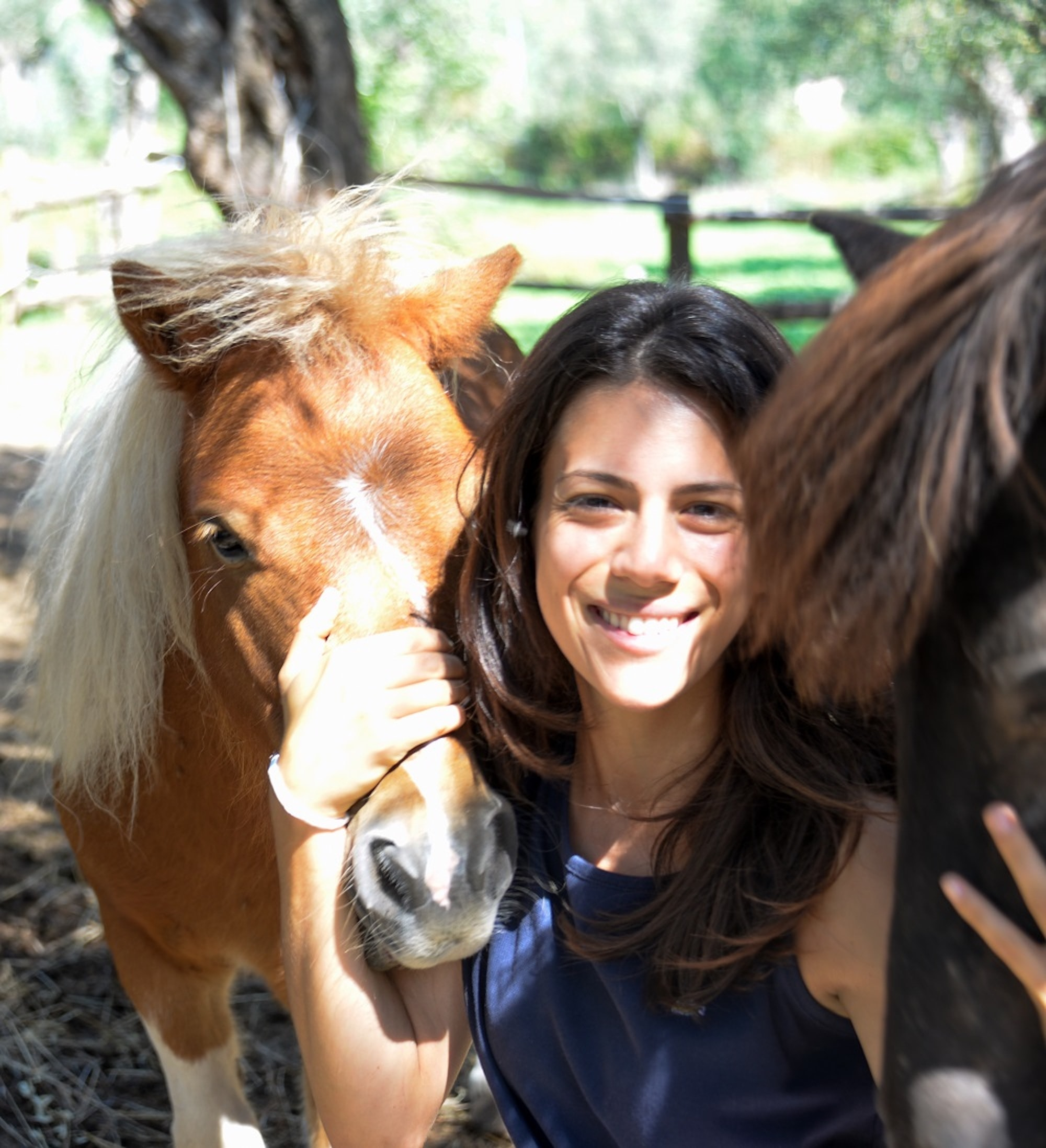 Go to Lucia de Ferrari's profile