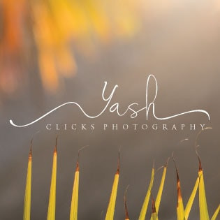 Go to Yashclicks Photography's profile