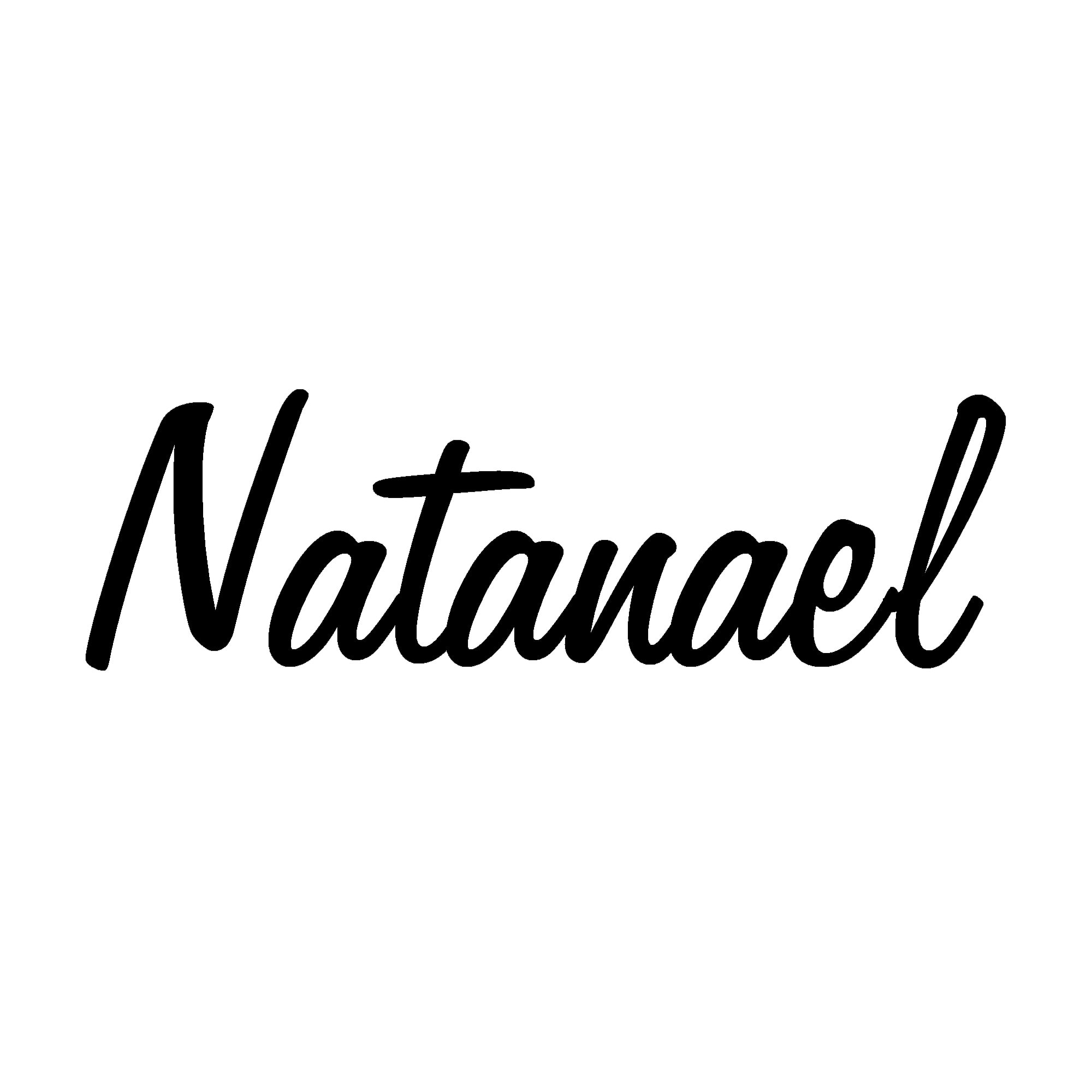 Avatar of user Natanael Melchor