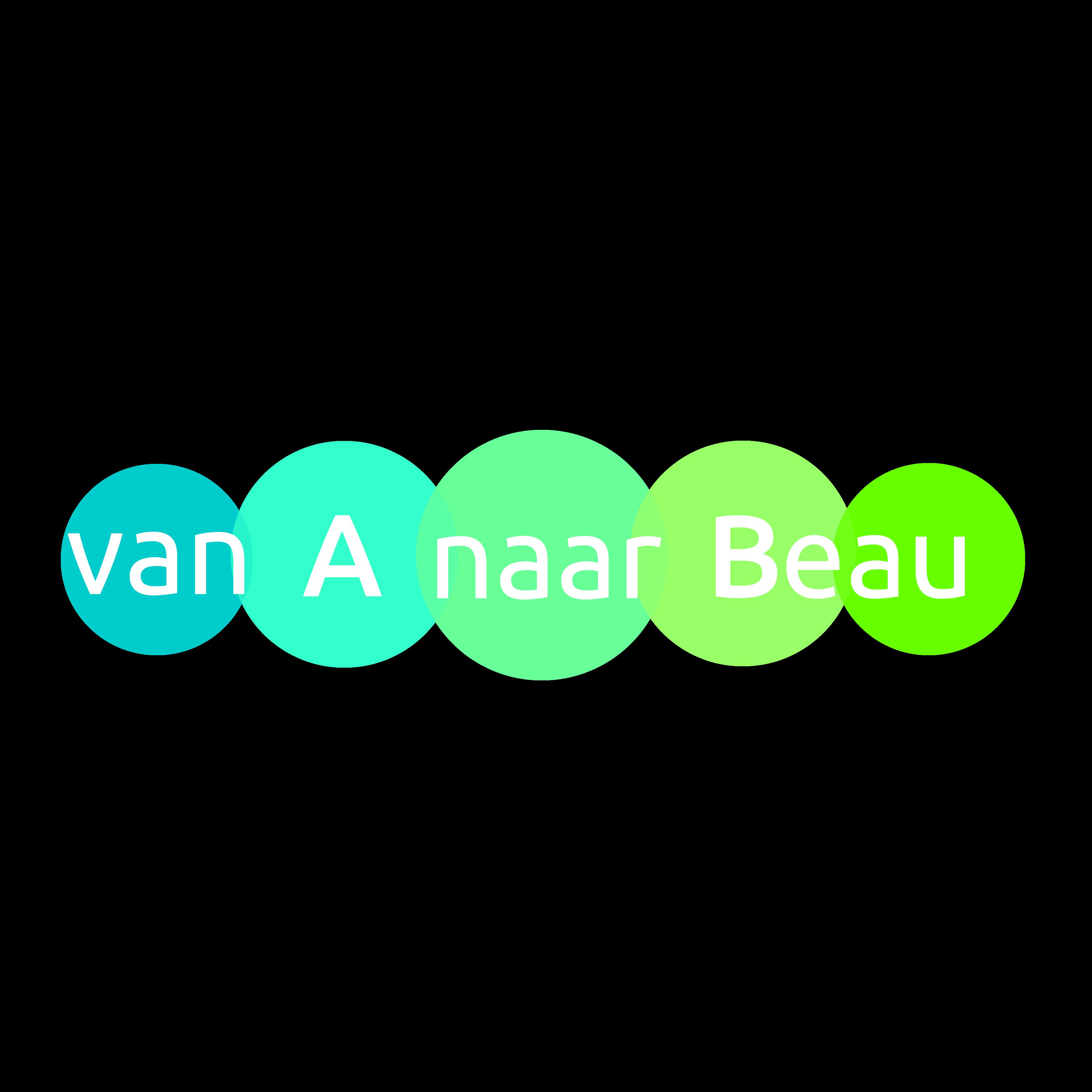 Avatar of user Beau Swierstra