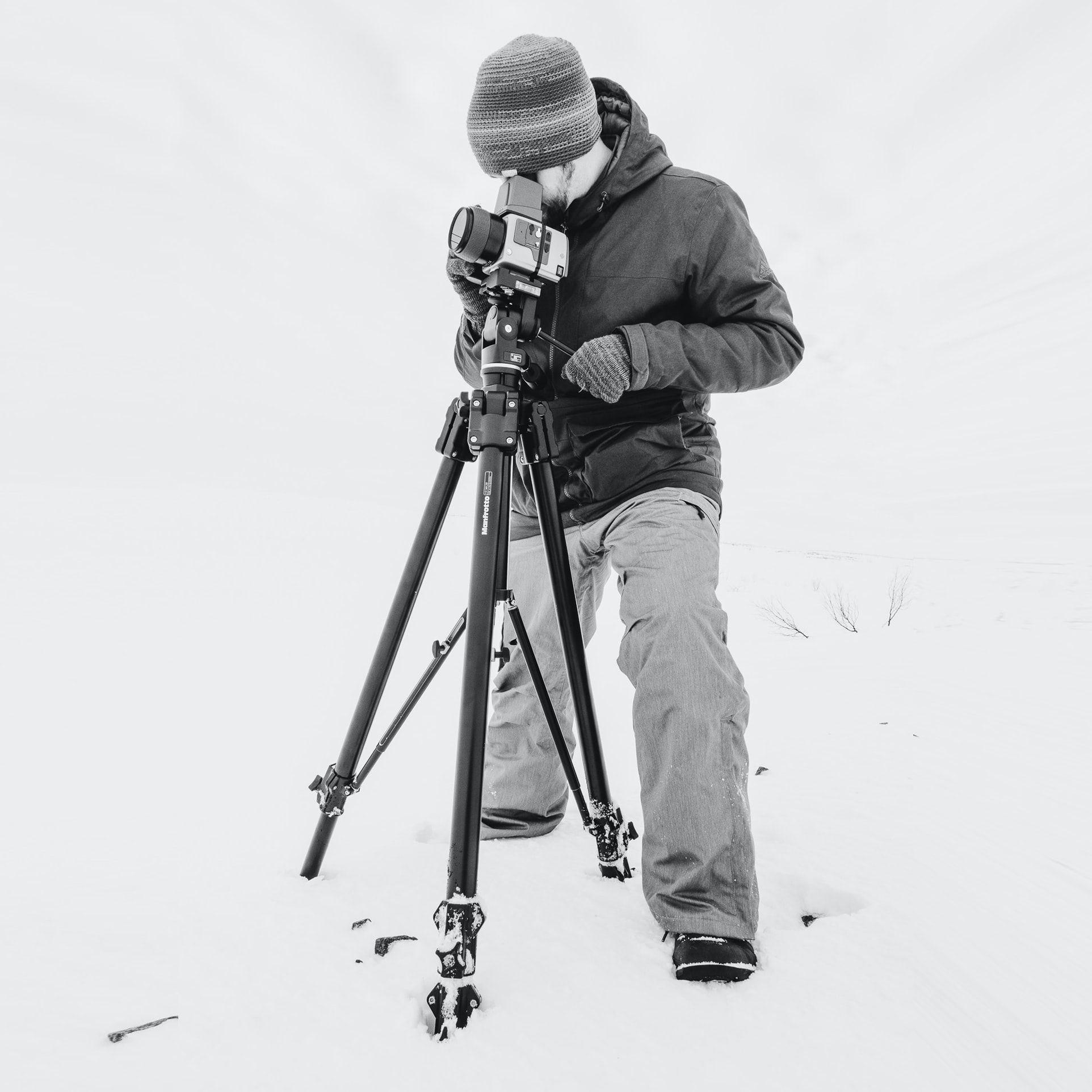 Art Lasovsky