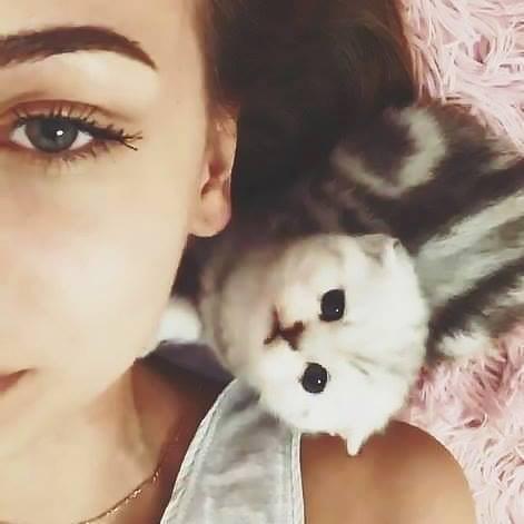 Go to Kitty Cris's profile